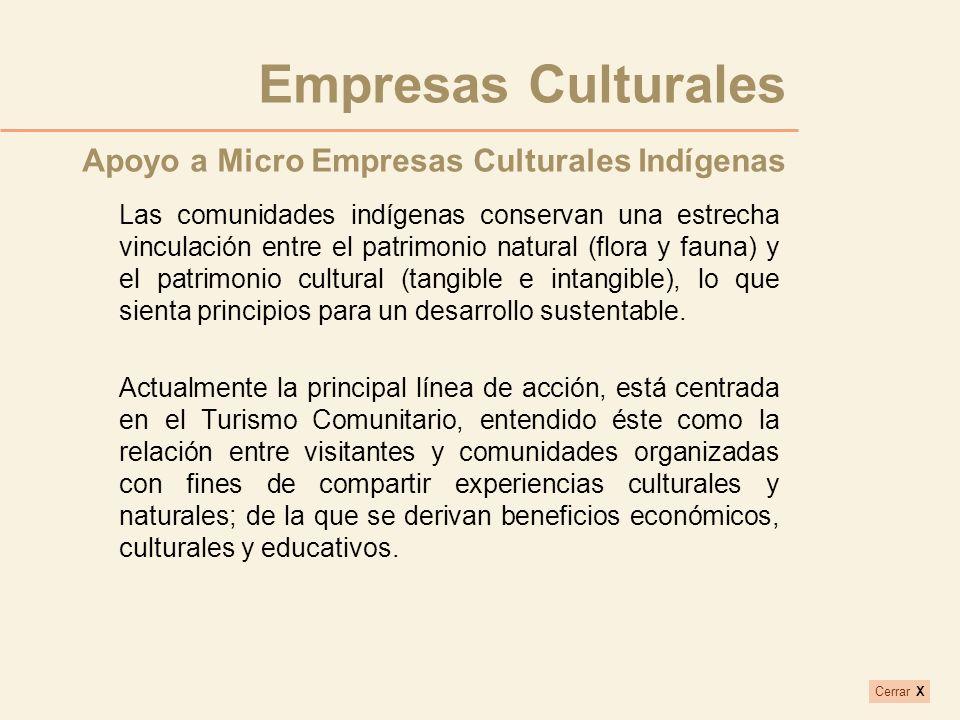 Empresas Culturales Apoyo a Micro Empresas Culturales Indígenas
