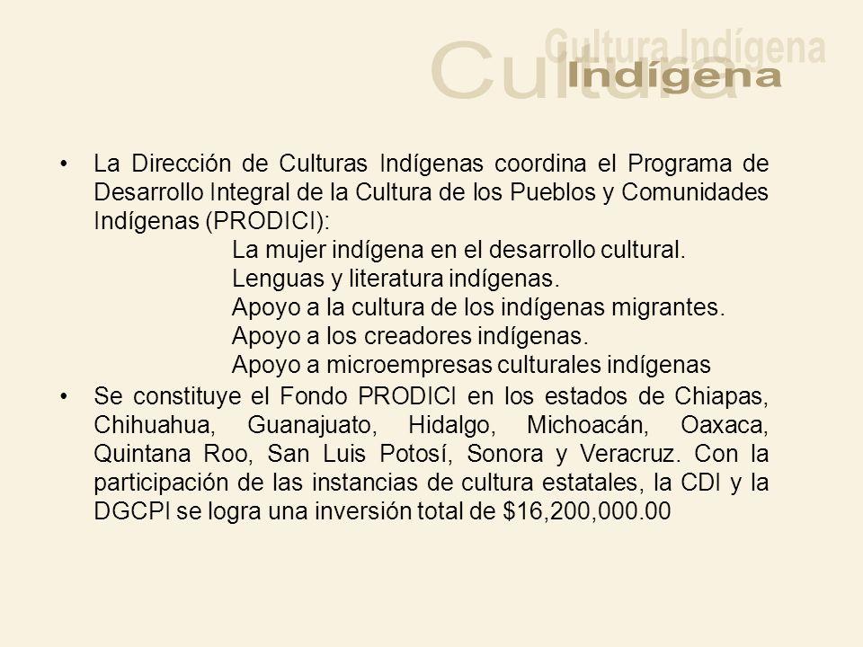 Cultura Indígena Indígena