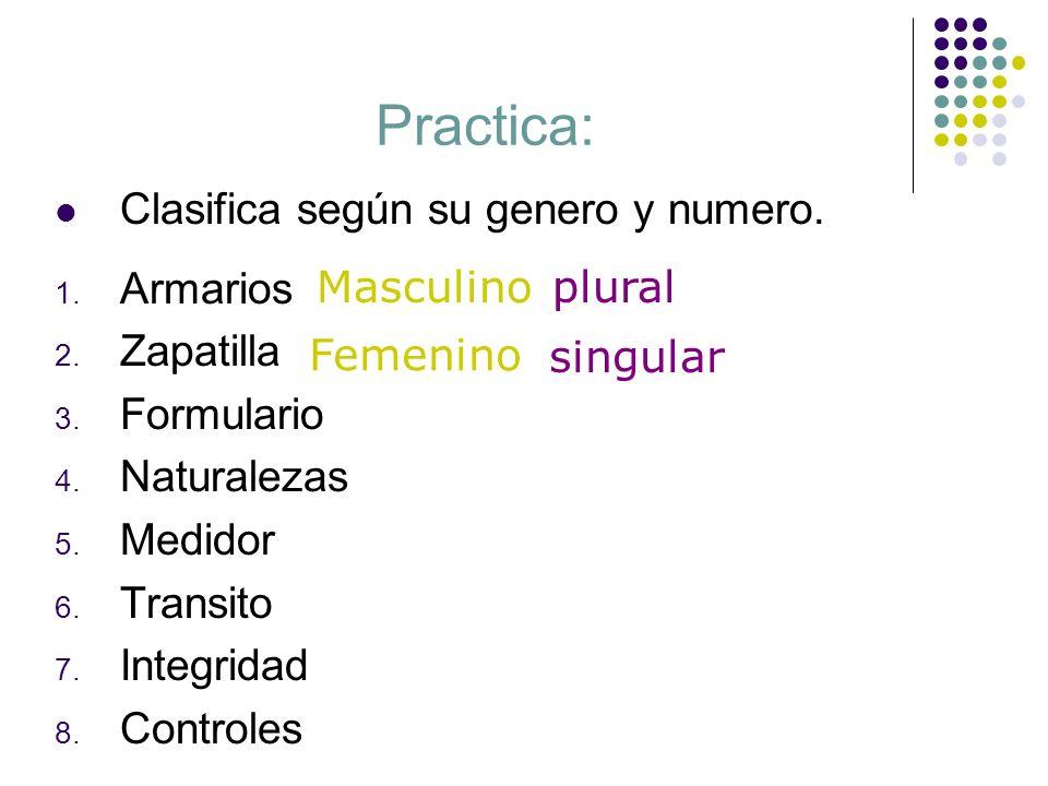 Practica: Clasifica según su genero y numero. Armarios Zapatilla