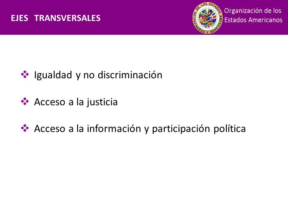 Financiamiento Igualdad y no discriminación Acceso a la justicia