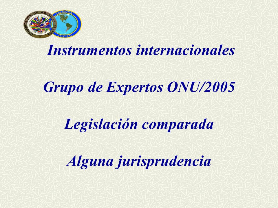 Instrumentos internacionales Grupo de Expertos ONU/2005