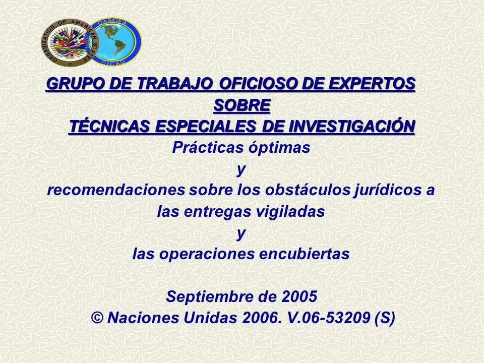 GRUPO DE TRABAJO OFICIOSO DE EXPERTOS SOBRE