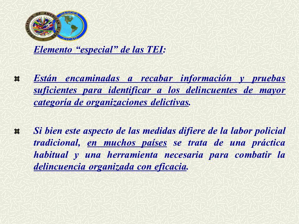 Elemento especial de las TEI: