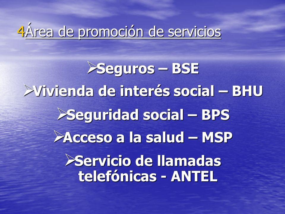 Área de promoción de servicios