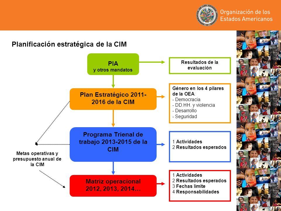 Planificación estratégica de la CIM