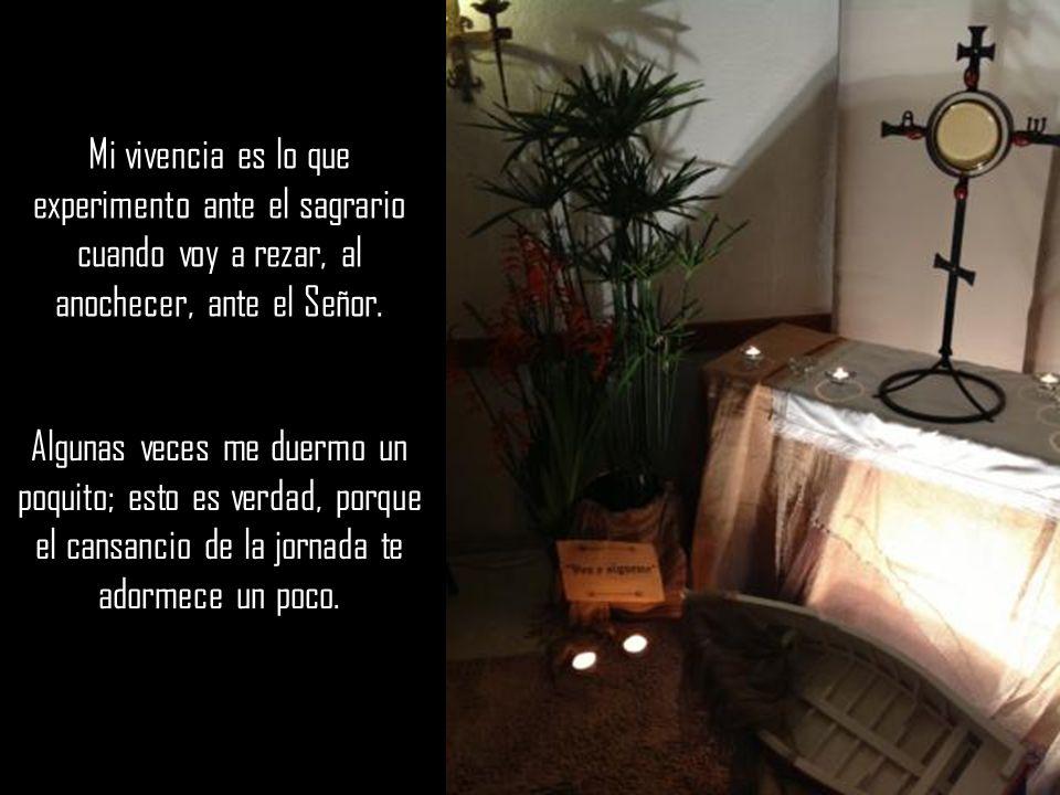 Mi vivencia es lo que experimento ante el sagrario cuando voy a rezar, al anochecer, ante el Señor.