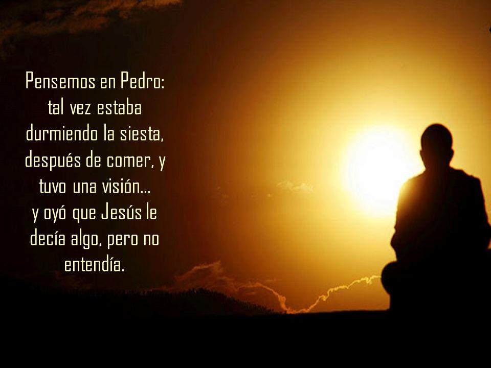 Pensemos en Pedro: tal vez estaba durmiendo la siesta, después de comer, y tuvo una visión… y oyó que Jesús le decía algo, pero no entendía.