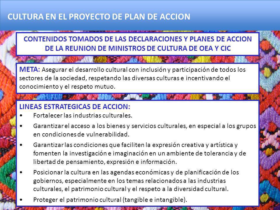 CULTURA EN EL PROYECTO DE PLAN DE ACCION