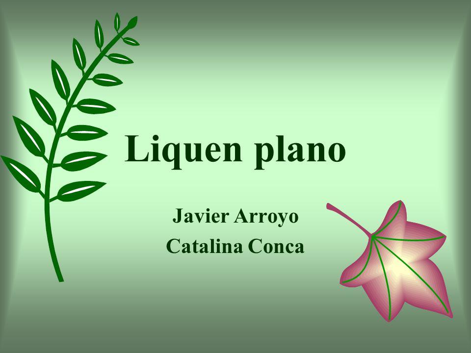 Javier Arroyo Catalina Conca