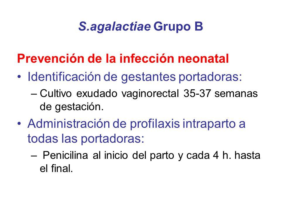 Prevención de la infección neonatal