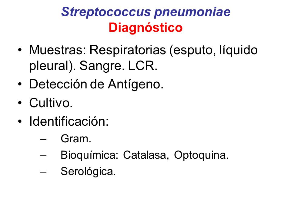 Streptococcus pneumoniae Diagnóstico