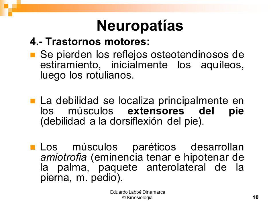 Neuropatías. - ppt video online descargar