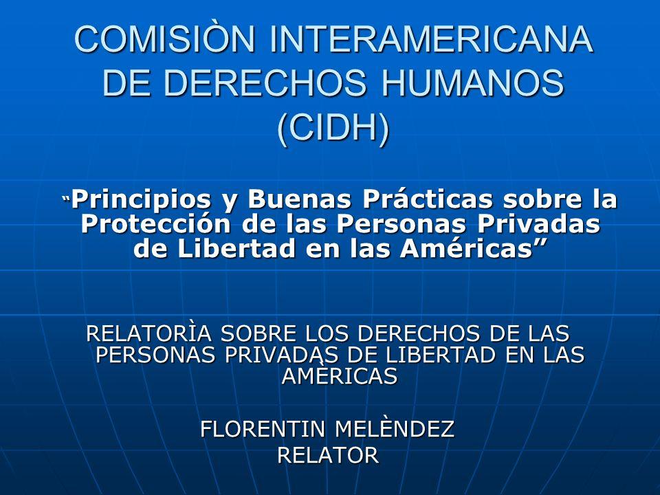 COMISIÒN INTERAMERICANA DE DERECHOS HUMANOS (CIDH)