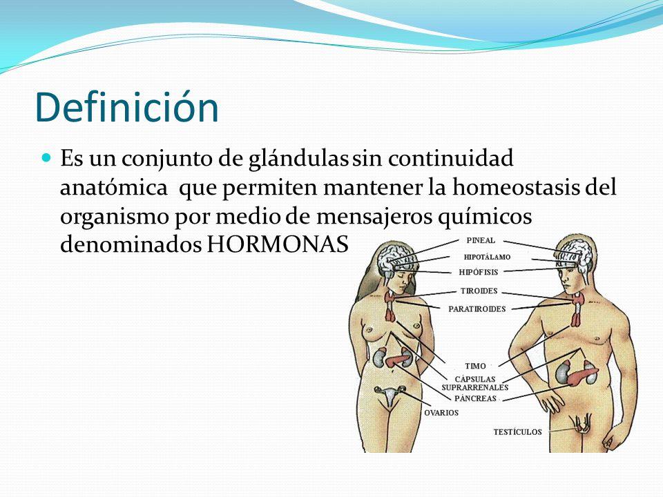 Perfecto Homeostasis Definición Anatomía Friso - Imágenes de ...