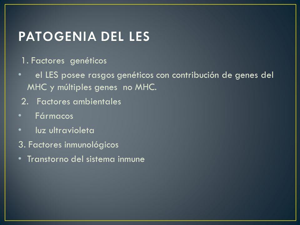 PATOGENIA DEL LES 1. Factores genéticos