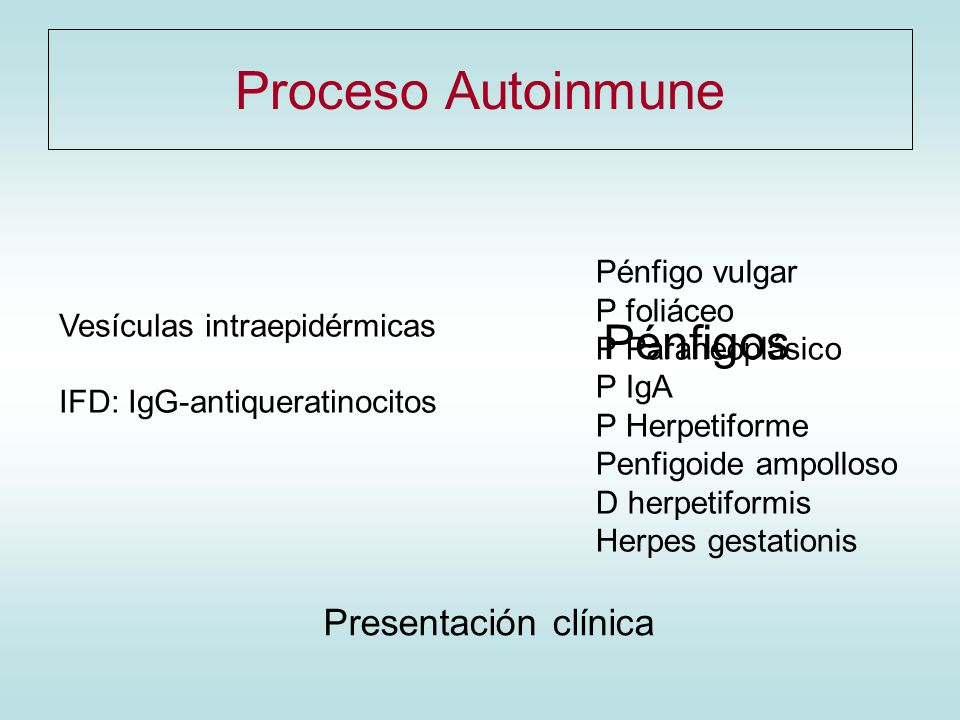 Proceso Autoinmune Pénfigos Presentación clínica Pénfigo vulgar