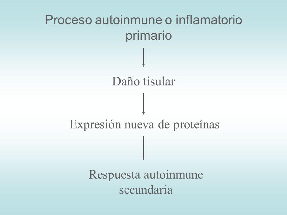 Proceso autoinmune o inflamatorio primario