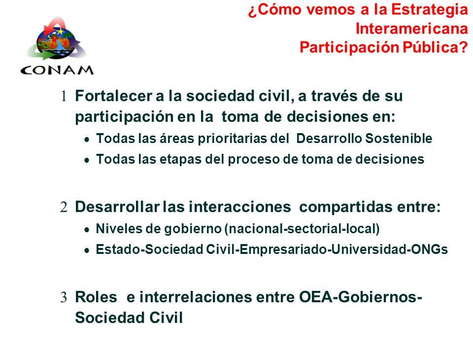 ¿Cómo vemos a la Estrategia Interamericana Participación Pública