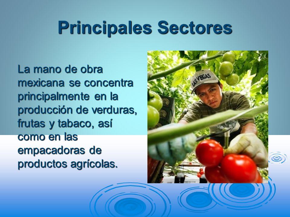 Principales Sectores