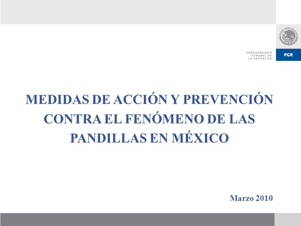MEDIDAS DE ACCIÓN Y PREVENCIÓN CONTRA EL FENÓMENO DE LAS PANDILLAS EN MÉXICO