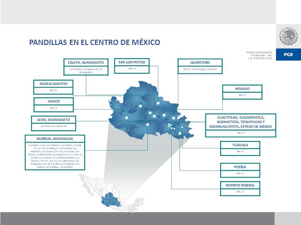 PANDILLAS EN EL CENTRO DE MÉXICO