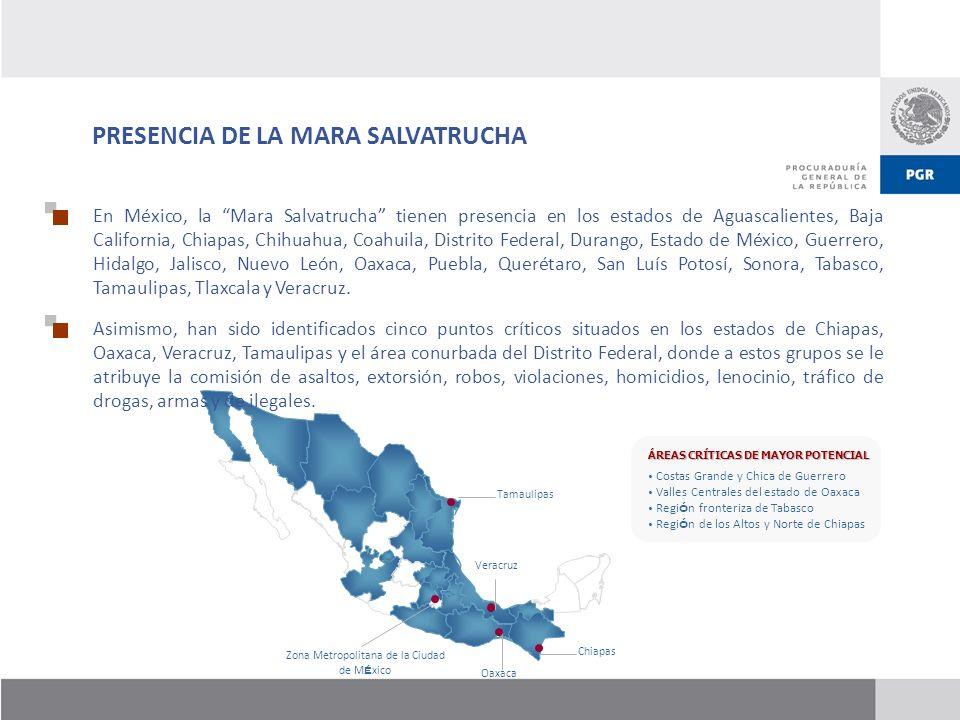 Zona Metropolitana de la Ciudad de México