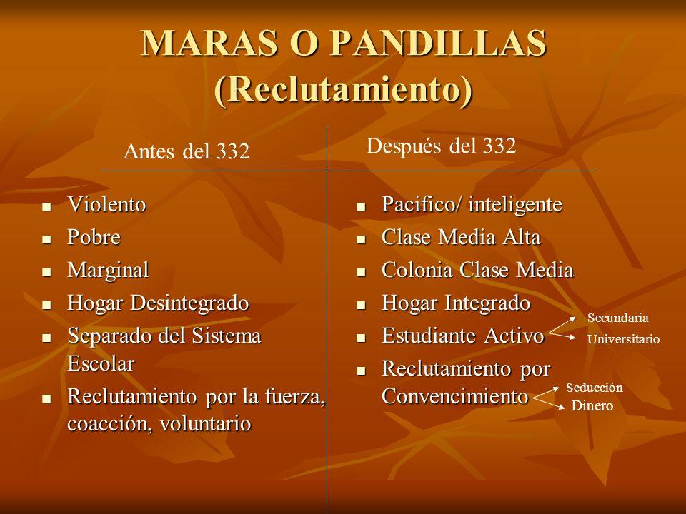 MARAS O PANDILLAS (Reclutamiento)