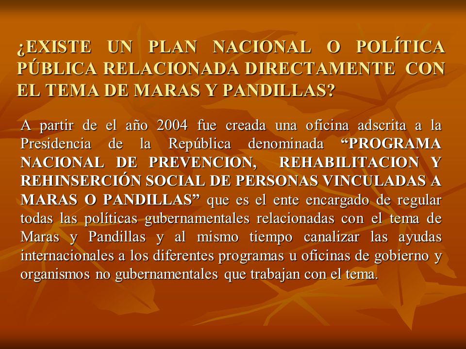 ¿EXISTE UN PLAN NACIONAL O POLÍTICA PÚBLICA RELACIONADA DIRECTAMENTE CON EL TEMA DE MARAS Y PANDILLAS