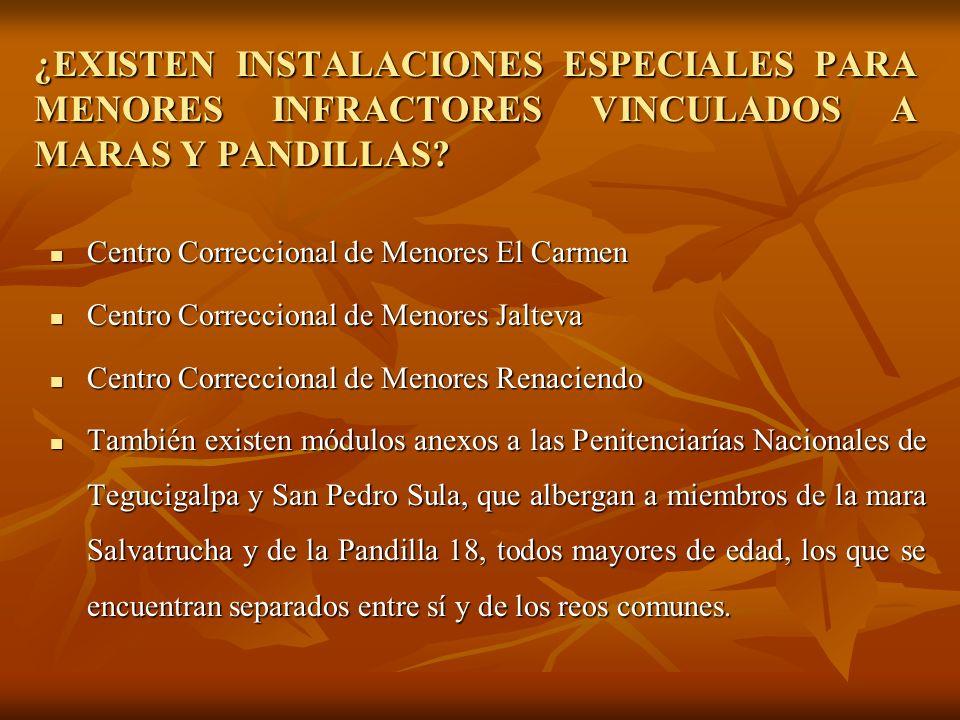 ¿EXISTEN INSTALACIONES ESPECIALES PARA MENORES INFRACTORES VINCULADOS A MARAS Y PANDILLAS