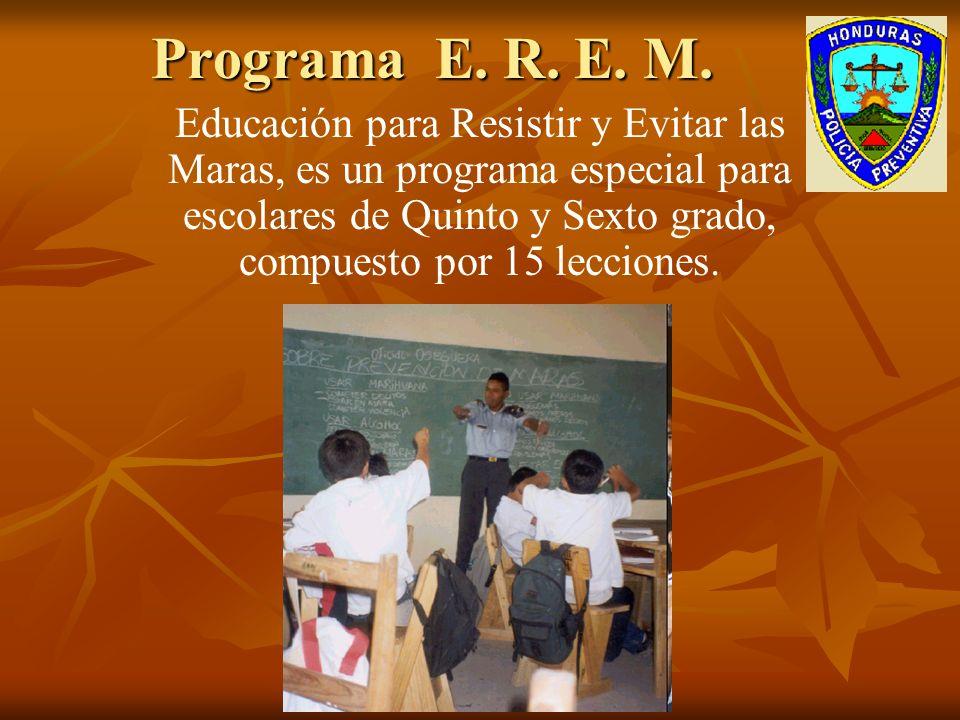 Programa E. R. E. M.