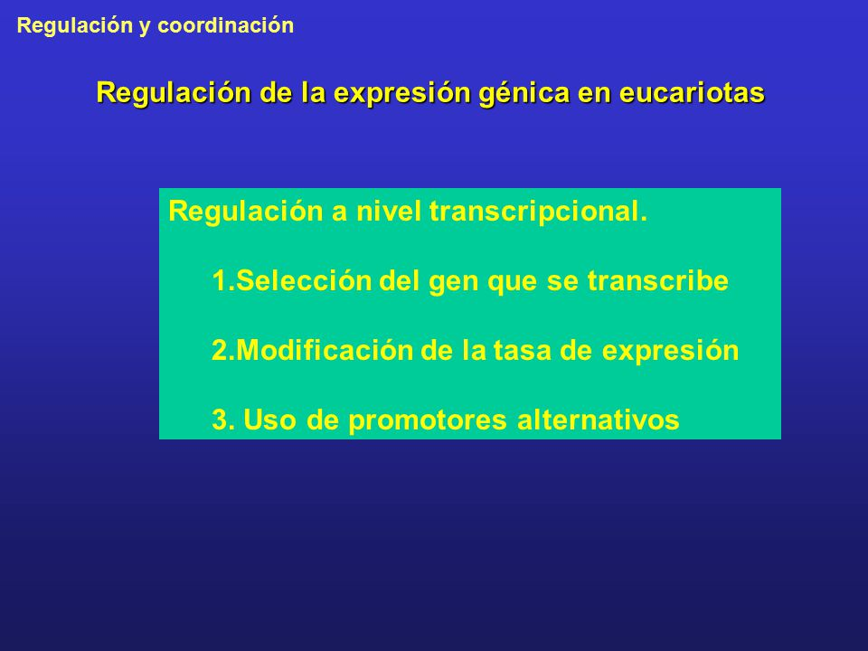 Regulación de la expresión génica en eucariotas