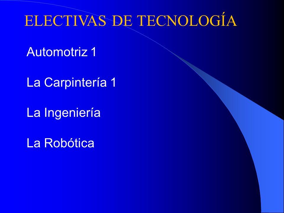 ELECTIVAS DE TECNOLOGÍA