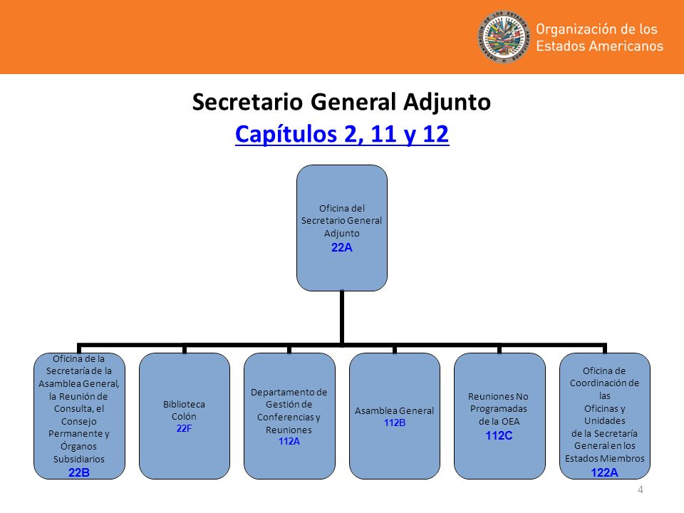 Secretario General Adjunto Capítulos 2, 11 y 12