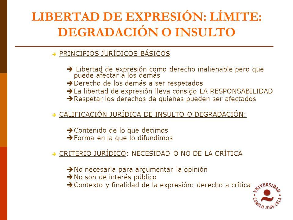 LIBERTAD DE EXPRESIÓN: LÍMITE: DEGRADACIÓN O INSULTO