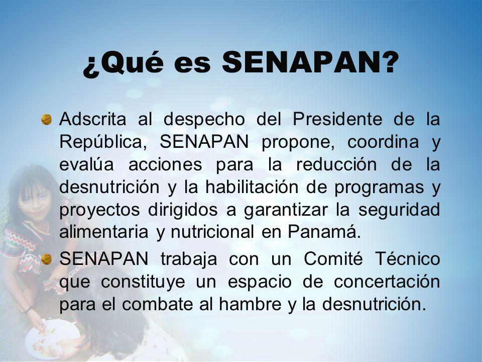 ¿Qué es SENAPAN