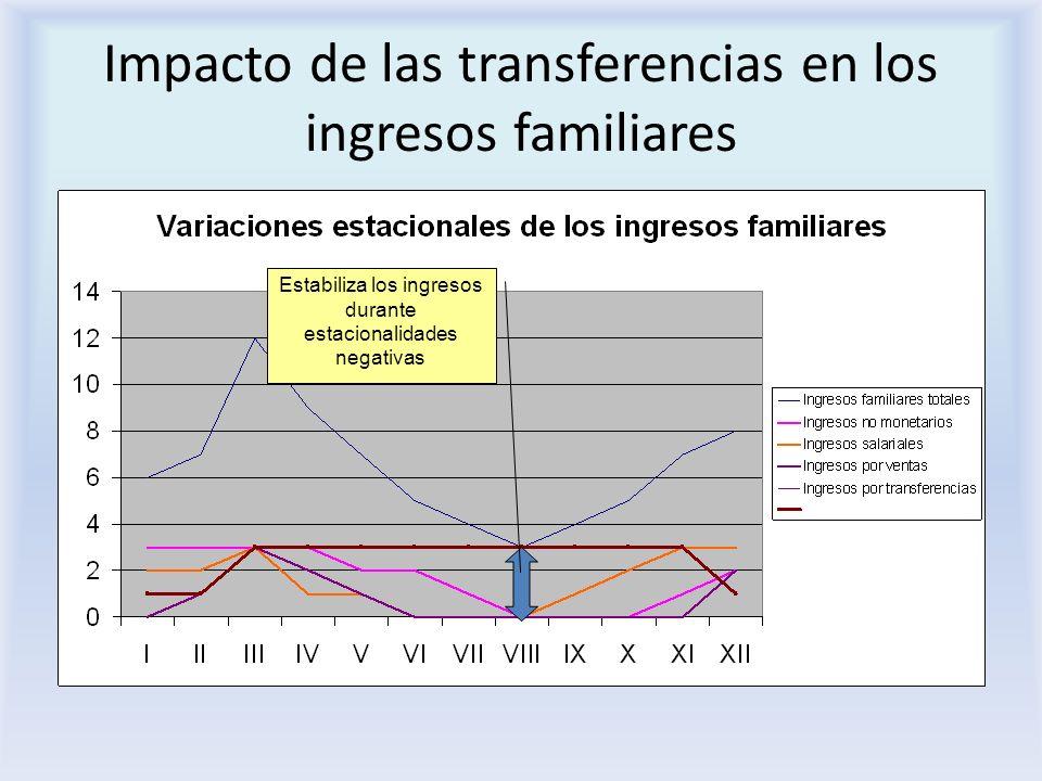 Impacto de las transferencias en los ingresos familiares