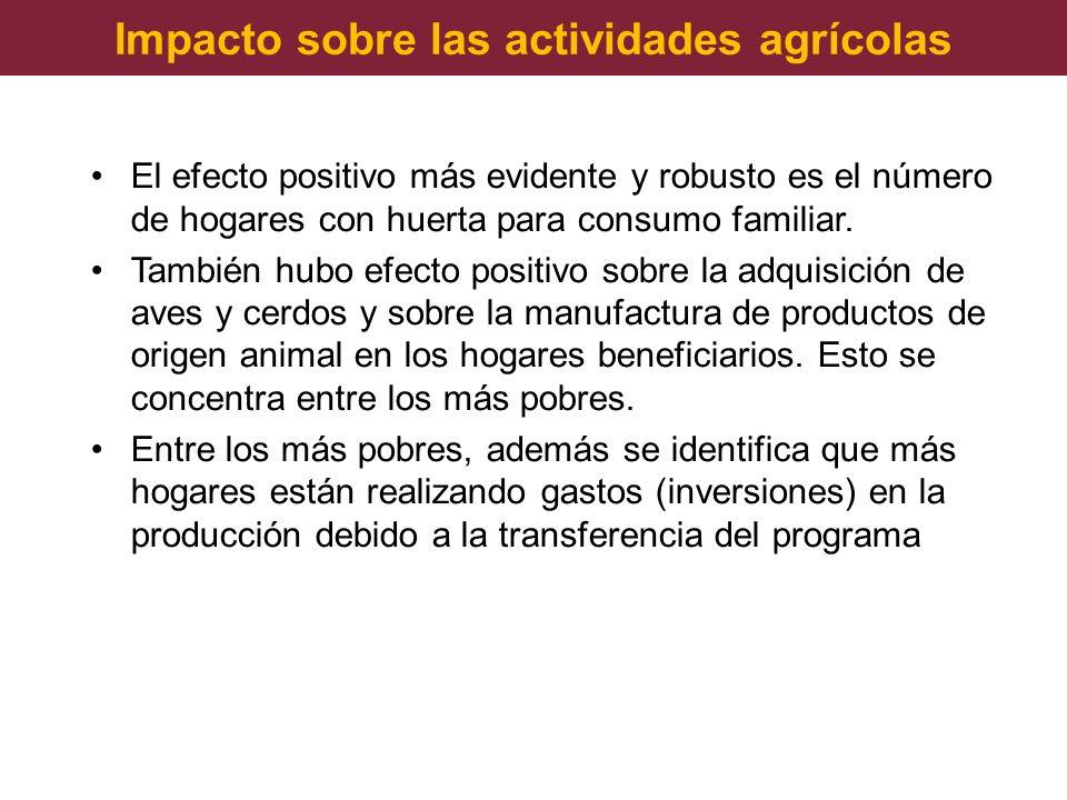 Impacto sobre las actividades agrícolas