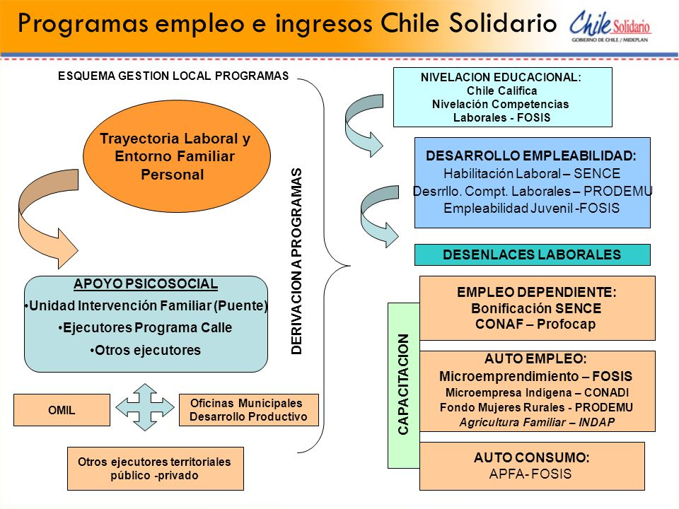 ESQUEMA GESTION LOCAL PROGRAMAS