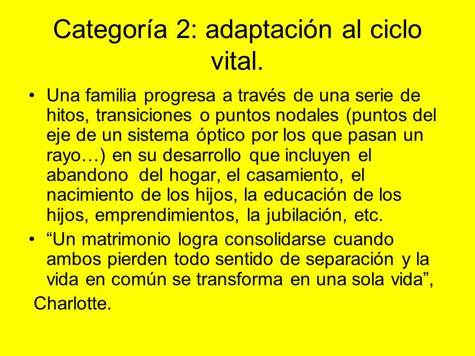Categoría 2: adaptación al ciclo vital.