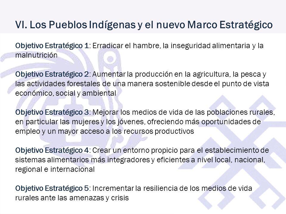 VI. Los Pueblos Indígenas y el nuevo Marco Estratégico