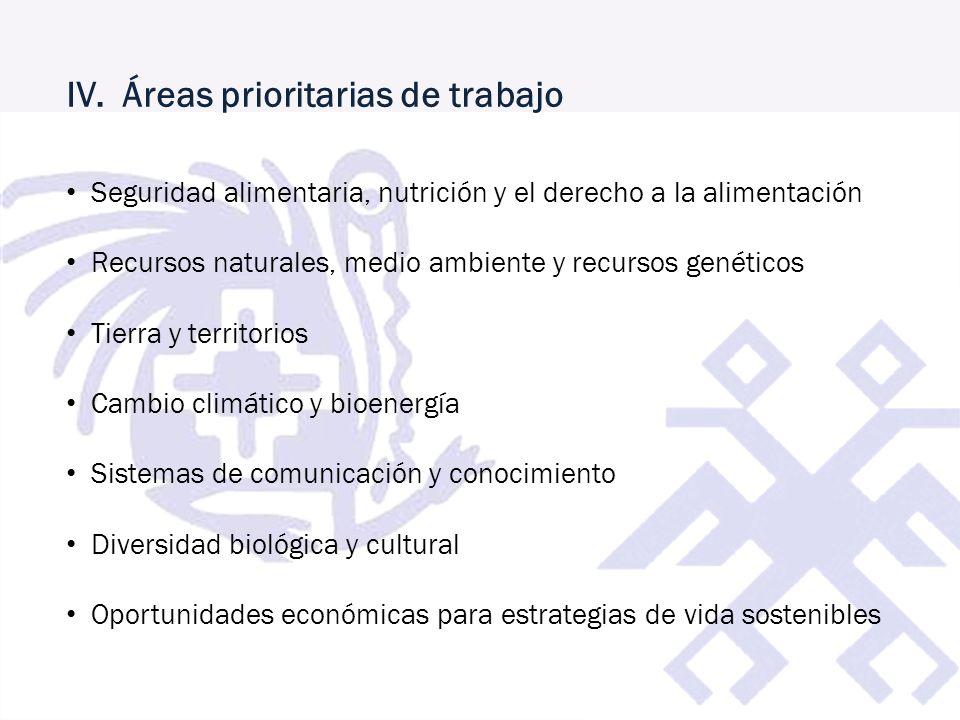 IV. Áreas prioritarias de trabajo
