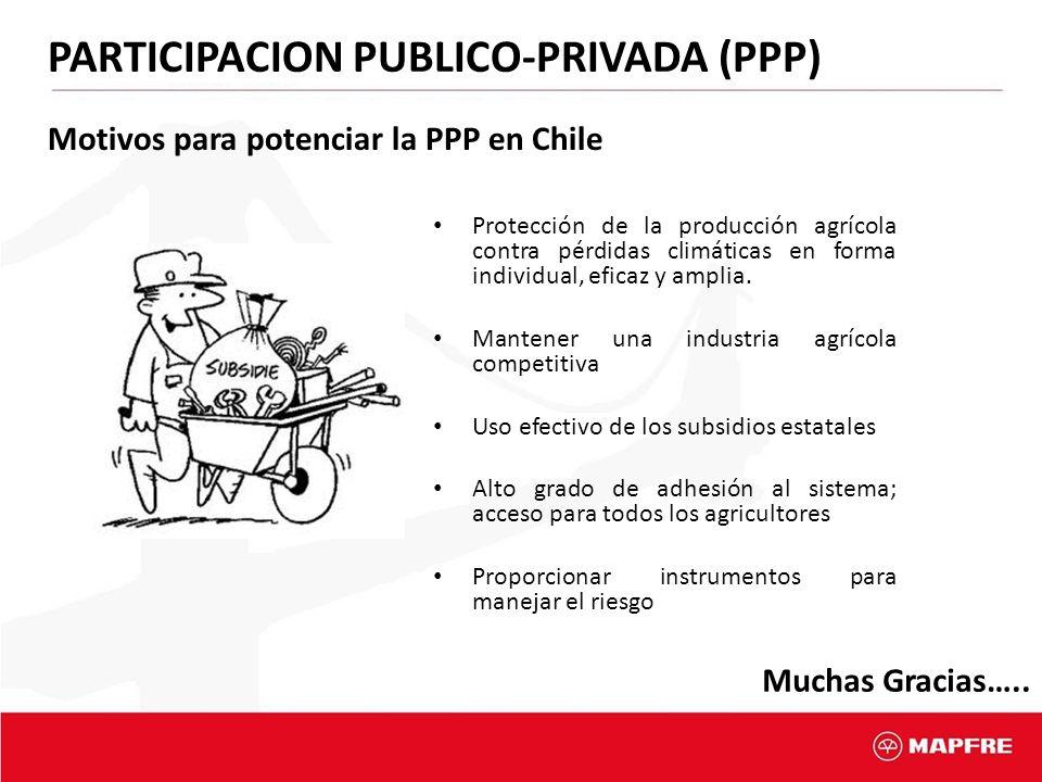 PARTICIPACION PUBLICO-PRIVADA (PPP)