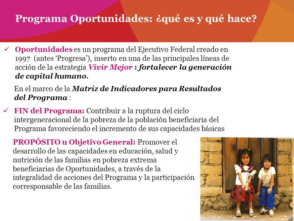 Programa Oportunidades: ¿qué es y qué hace