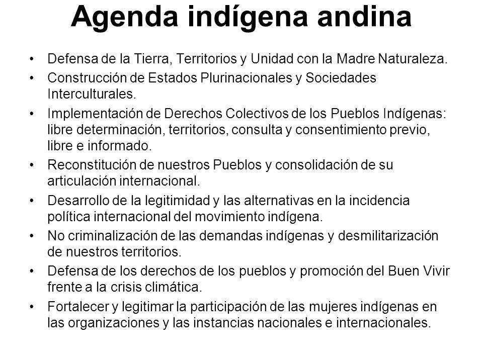 Agenda indígena andina