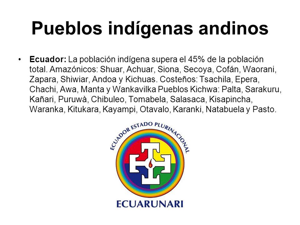 Pueblos indígenas andinos