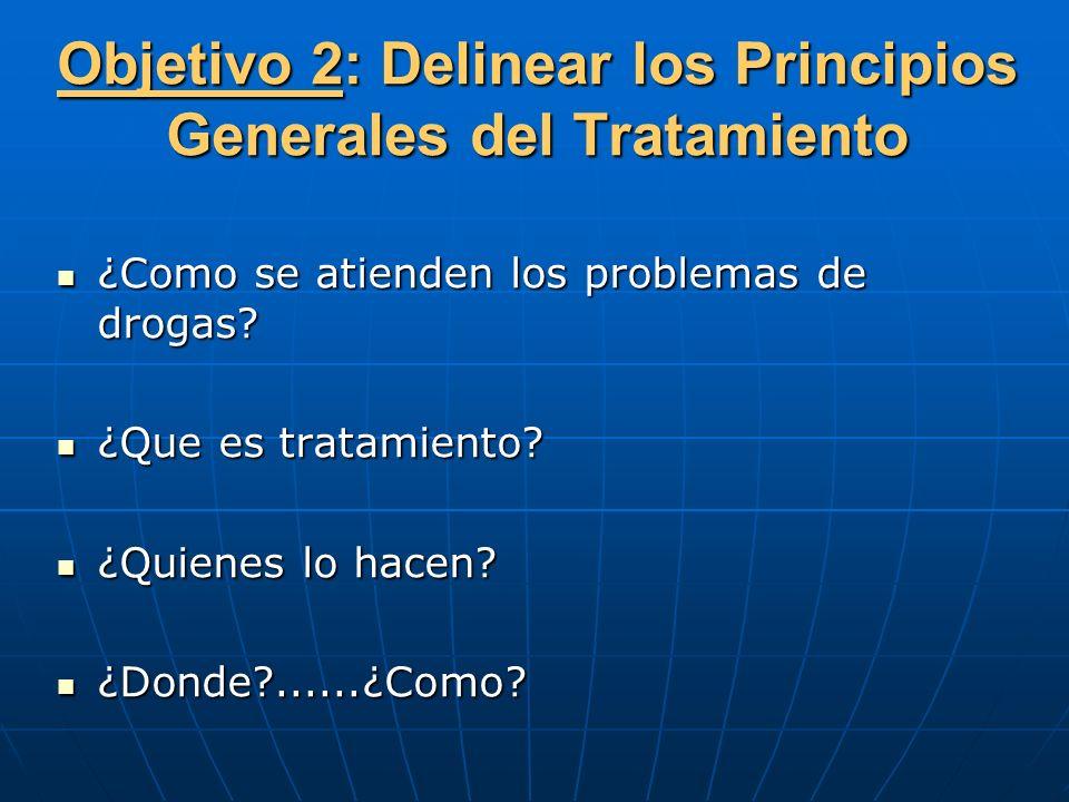Objetivo 2: Delinear los Principios Generales del Tratamiento