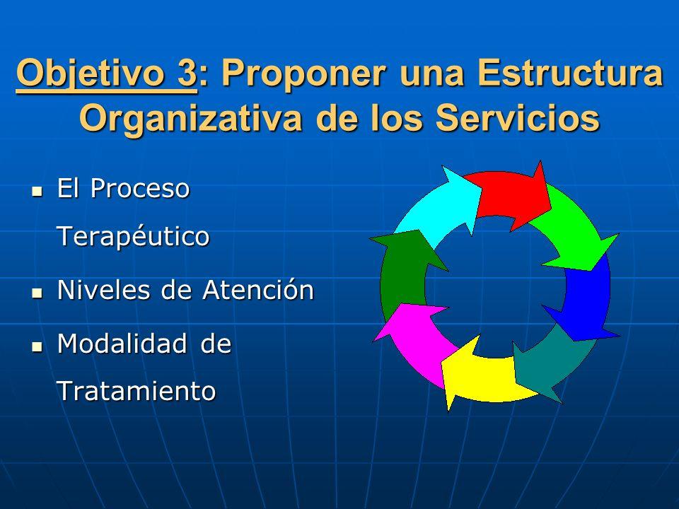Objetivo 3: Proponer una Estructura Organizativa de los Servicios
