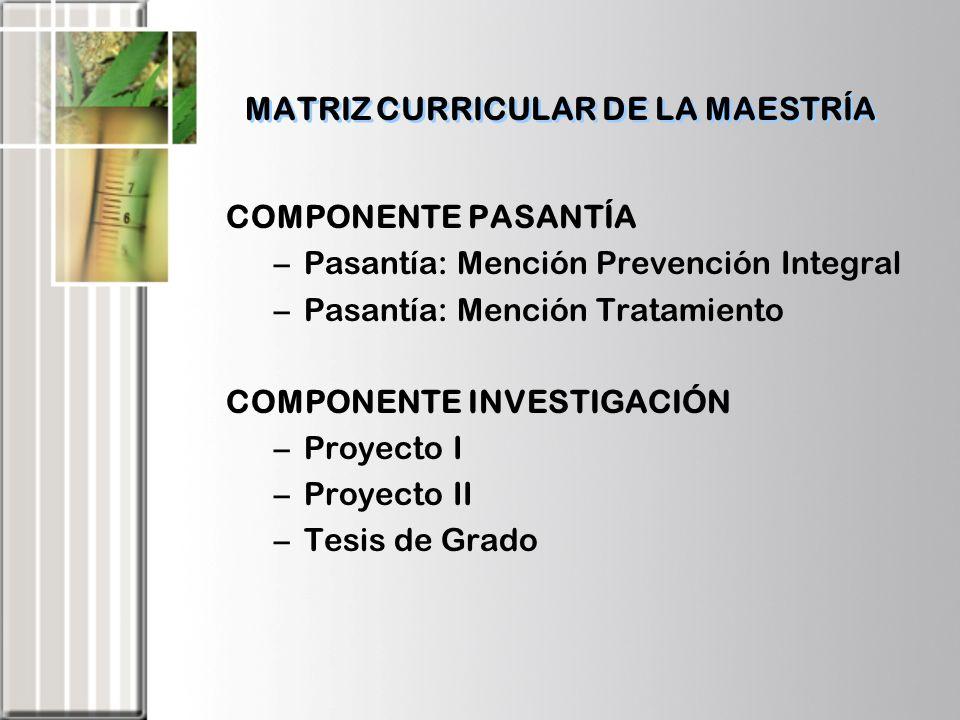 MATRIZ CURRICULAR DE LA MAESTRÍA
