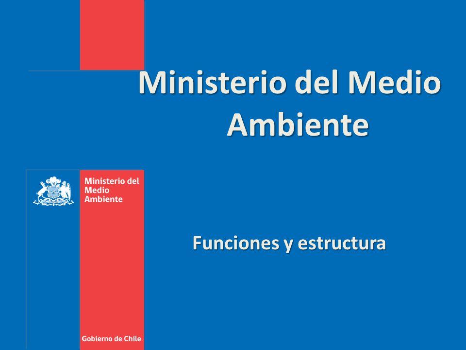 Nueva institucionalidad ambiental chilena ppt descargar for Ministerio del interior estructura