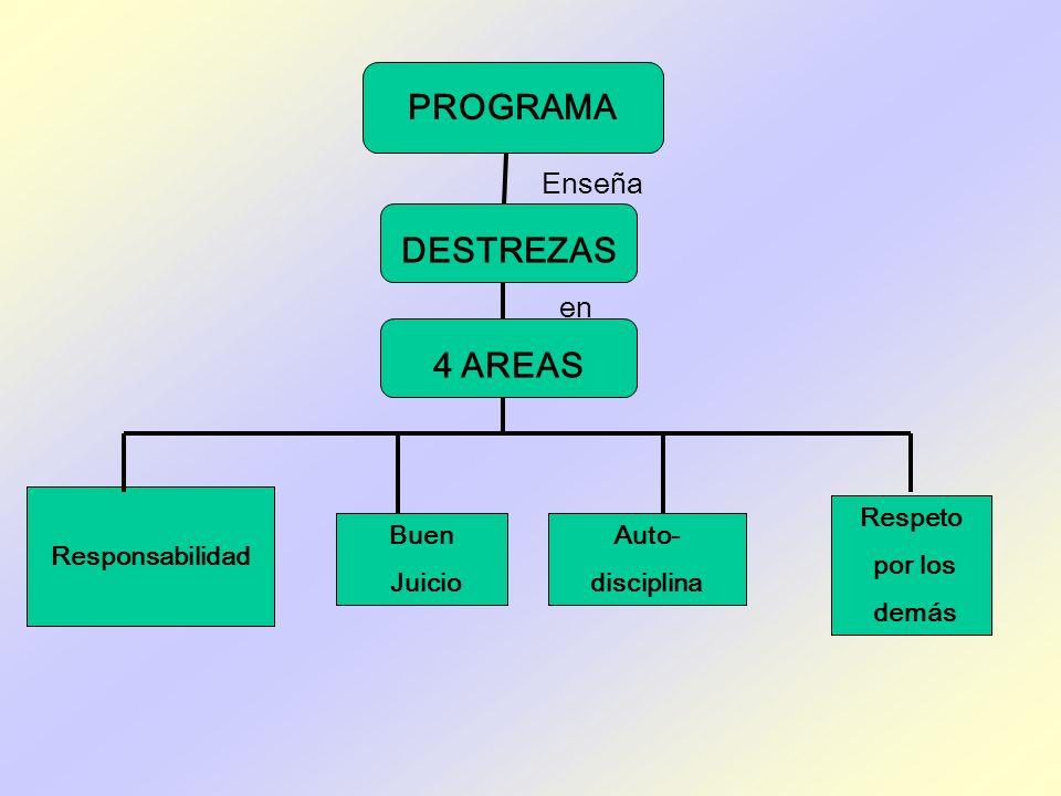 PROGRAMA DESTREZAS 4 AREAS